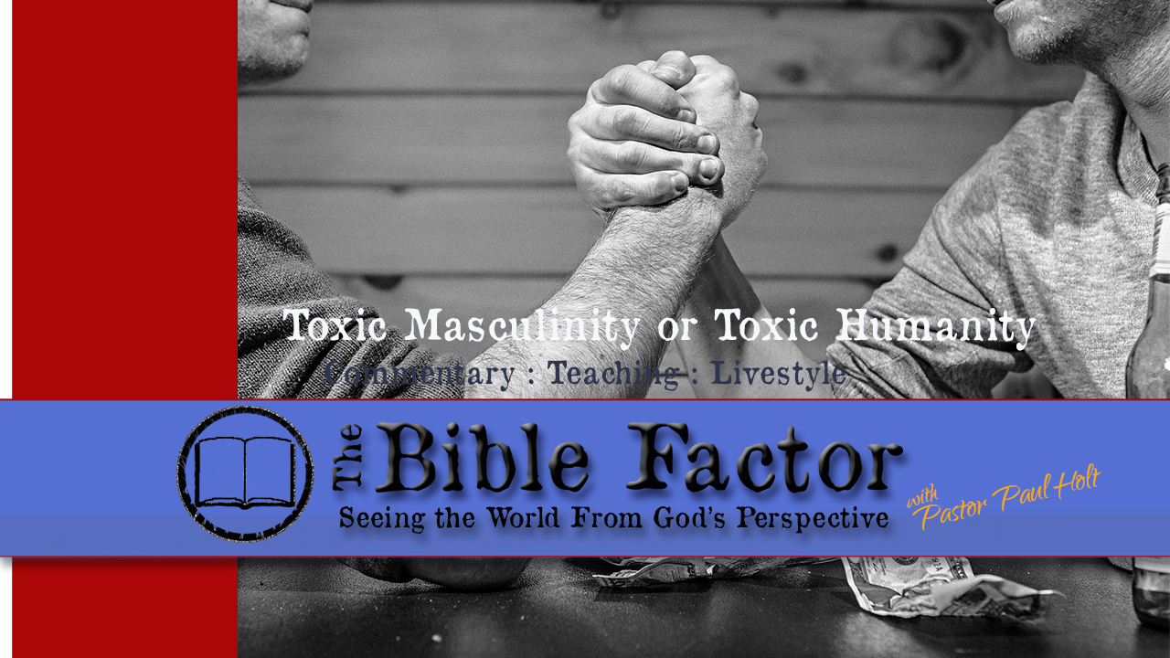 Toxic Masculinity or Toxic Humanity - The Bible Factor ...